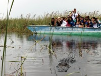 LAL-US-SS-BR-Excursion-Everglades-05